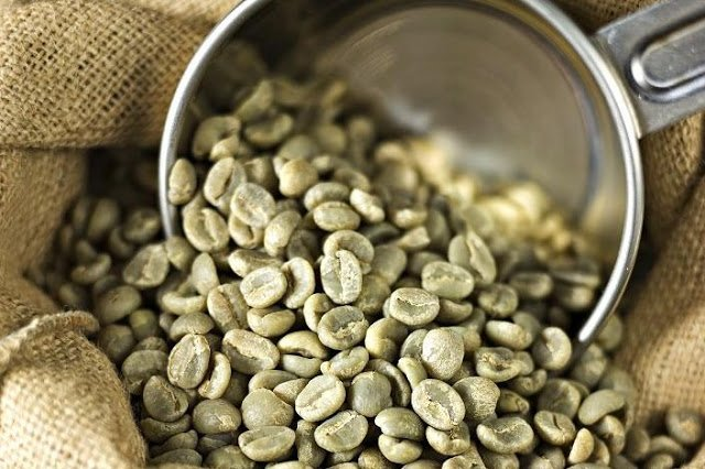 Organic Green Coffee Beans For Sale Organic Coffee Beans