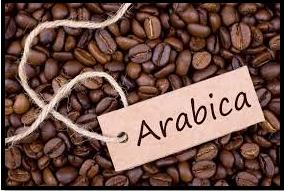 arabica green coffee beans wholesale